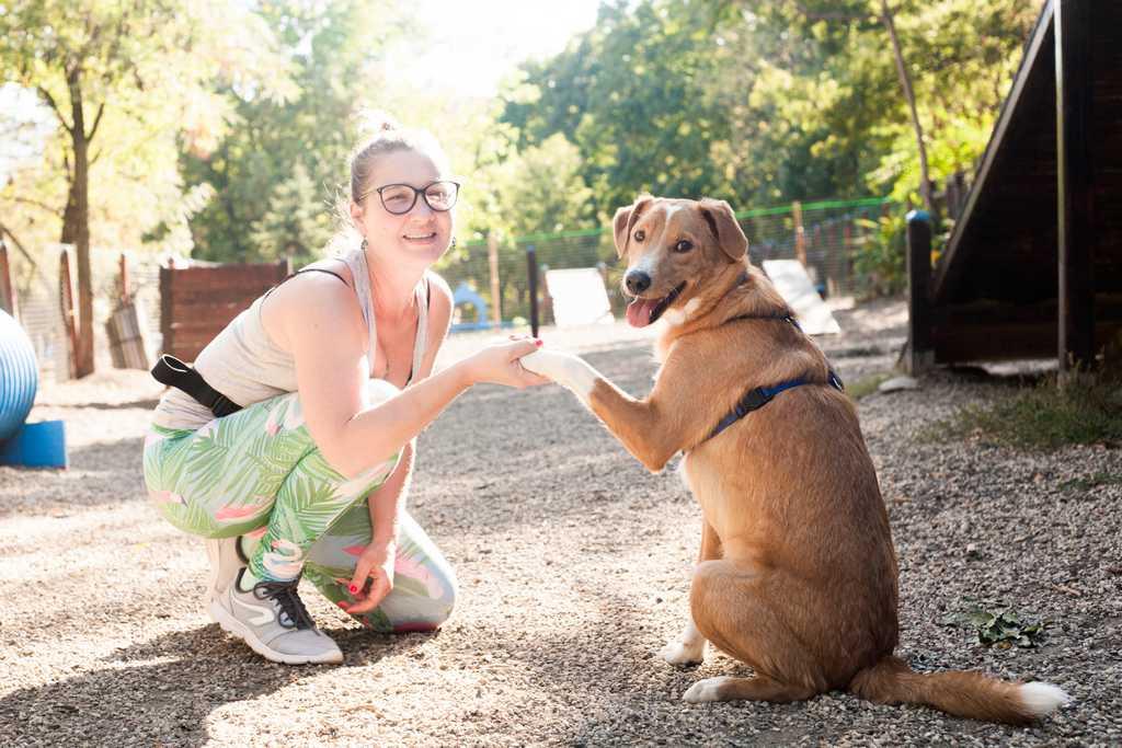 """7. куче Рио - пансион """"При нас е добре"""""""
